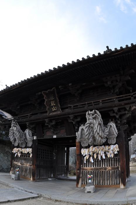 saikokuji_0281[1]