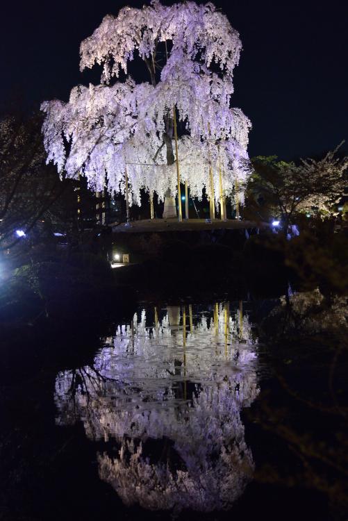 touji_6892[1]