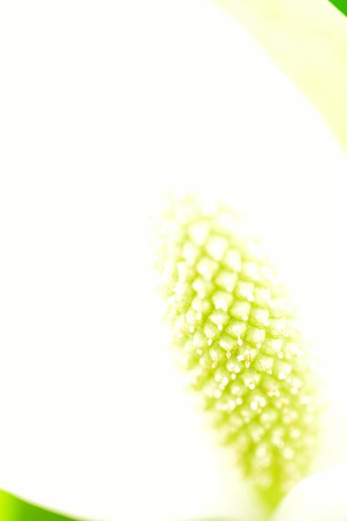 une_7489[1]
