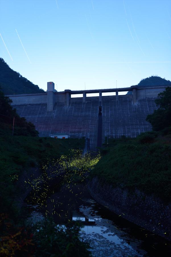 20140531_hotaru_03[1]