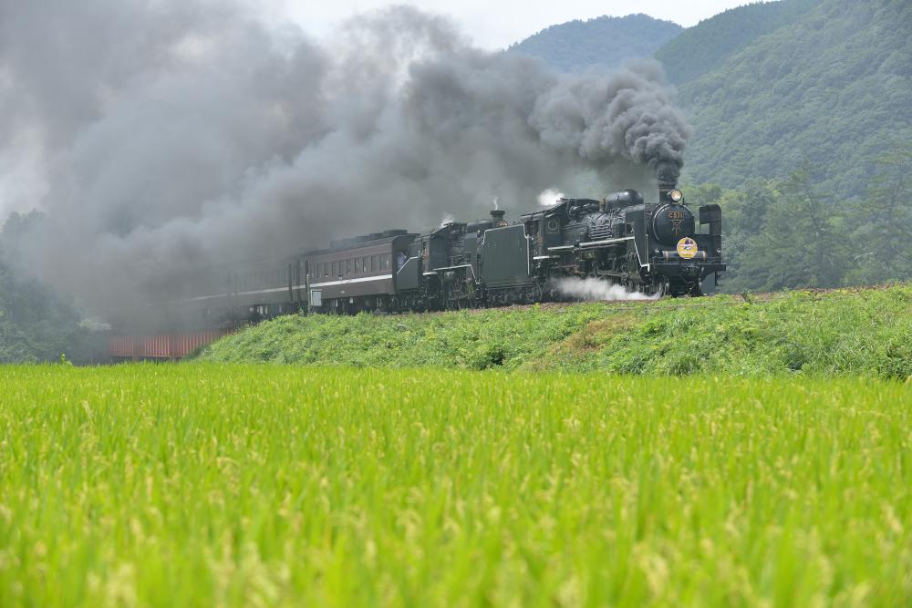 yamaguchi_0028[1]