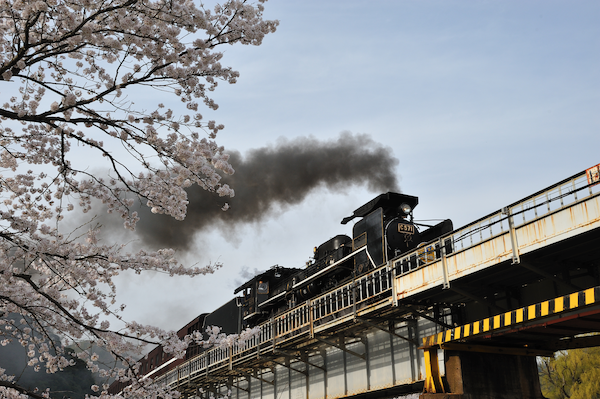 tsuwano_5822.png